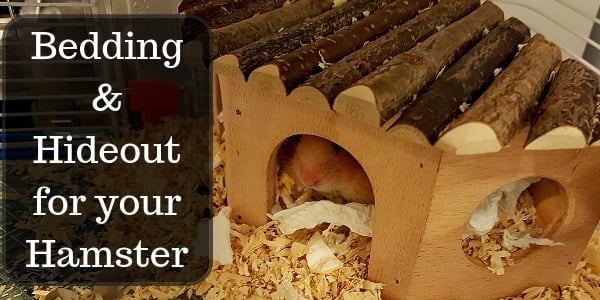 hamster bedding and hideout (2)