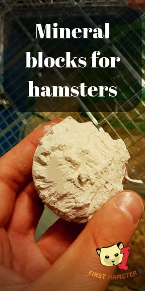 hamster mineral chew pin