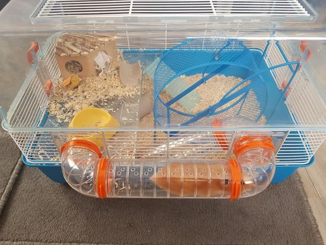 hamster cage (5)