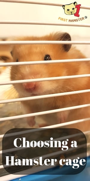hamster cage pin