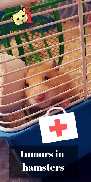 tumors and lumps in hamsters (1)